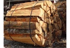 Brennholz Buche, Sterbund, trocken