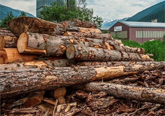 Brennholz lang geliefert